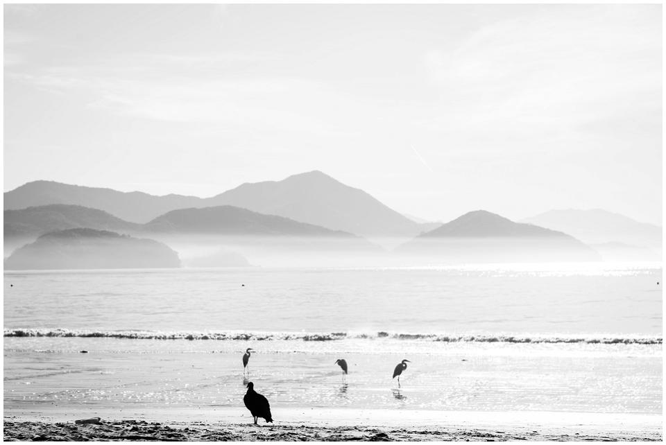 South-America-Post_0158.jpg